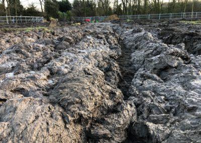 Belmoor Mud1